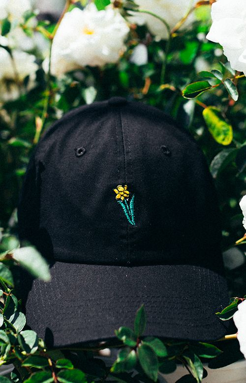 20567f12 in bloom, Daffodil Dad Hat - Black | hats | Hats, Dad hats, Dope hats