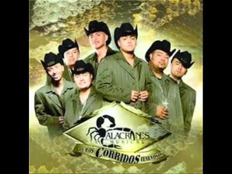 Alacranes Musical Moviditas Buenas Music Videos Poster Movies