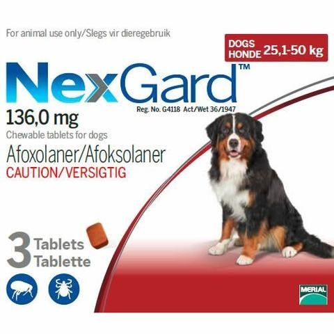 Nexgard Chewable Tick Flea Tablet For Dogs 25 1 50kg With Images Dogs Fleas Ticks