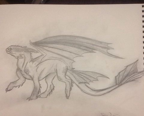 My Drawing Of Toothless Night Fury How To Train Your Dragon