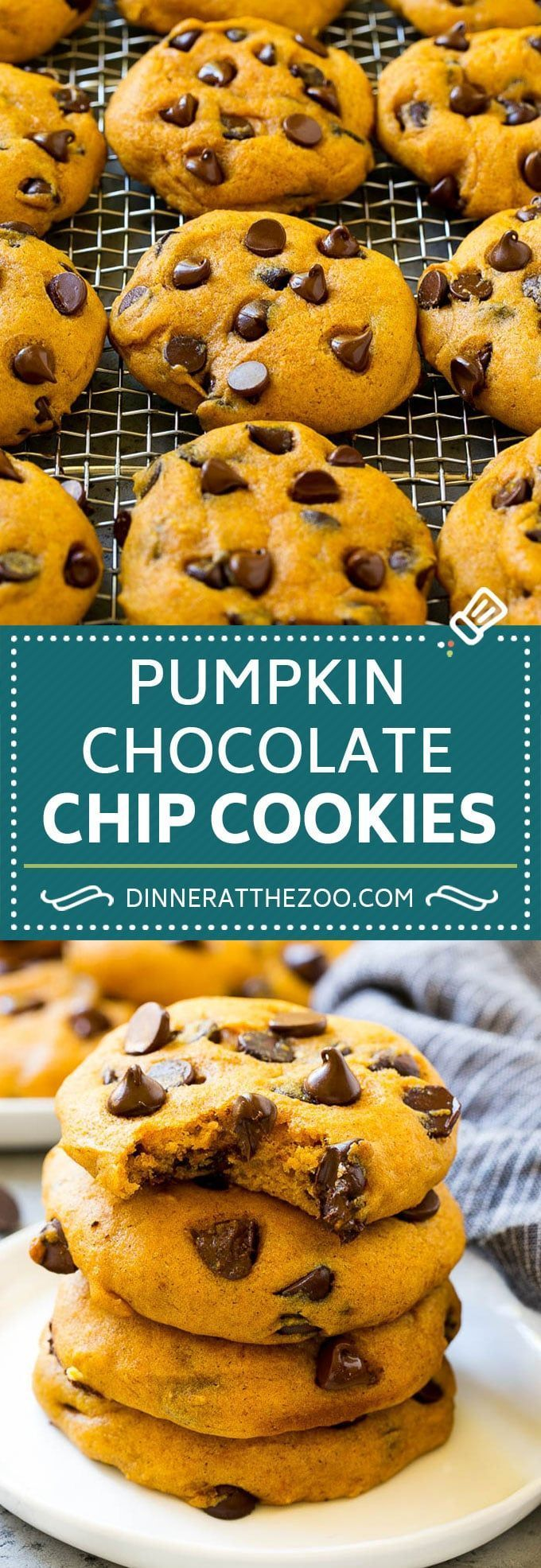 Pumpkin Chocolate Chip Cookies Recipe | Pumpkin Cookies | Pumpkin Chocolate Cookies #pumpkin #cookies #chocolate #baking #fall #dinneratthezoo #dessert #chocolatechipcookies