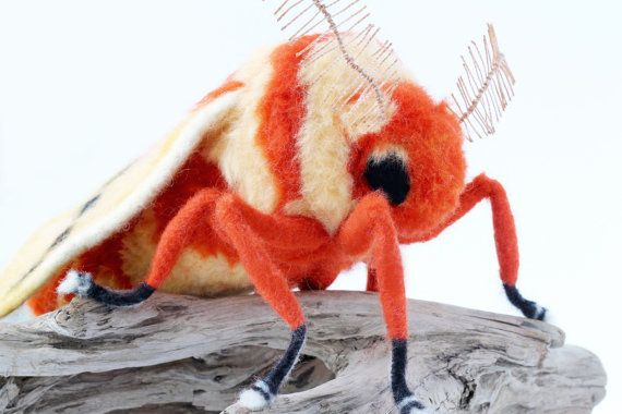 RESERVED for HEATHER Needle Felted Moth Large by YvonnesWorkshop