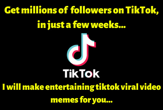 I Will Make Funny Tiktok Viral Video Memes For You In 2021 Instagram Bio Quotes Videos Funny Memes