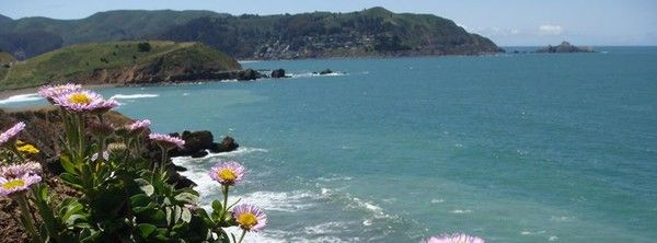 Top Ten Things To Do In Pacifica Ca A San Francisco Beachfront Destination