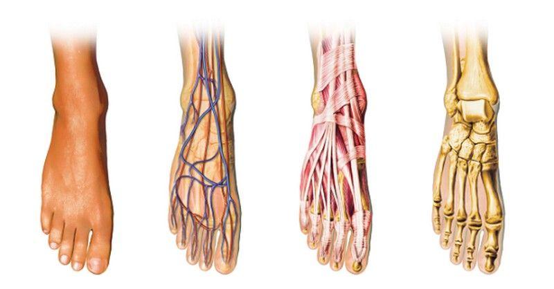 Trápia vás neustále studené ruky alebo nohy spôsobené slabou prekrvenosťou končatín? Tak potom vyskúšajte niektorý z týchto overených tipov.