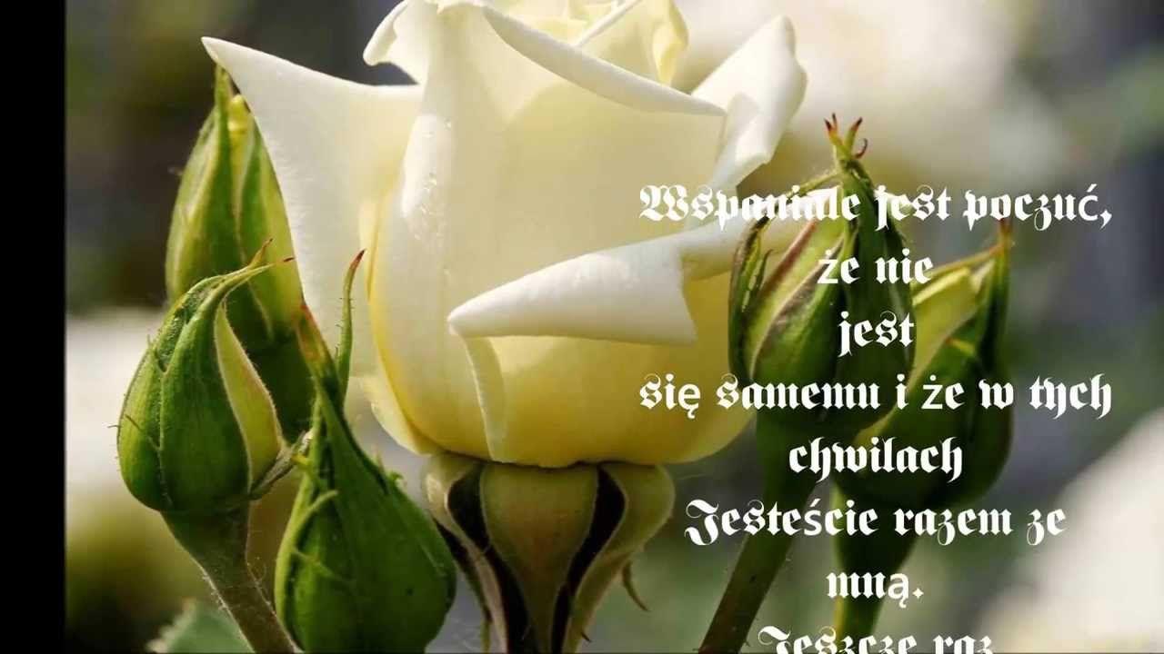 Serdecznie Dziekuje Wszystkim Za Zyczenia Urodzinowe I Pamiec Flowers Beautiful Flower Quotes Flower Beauty