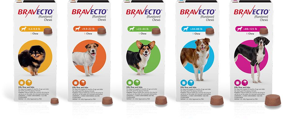 Bravecto Tasty Chew In 2020 Tick Treatment For Dogs Flea Meds For Cats Flea Meds