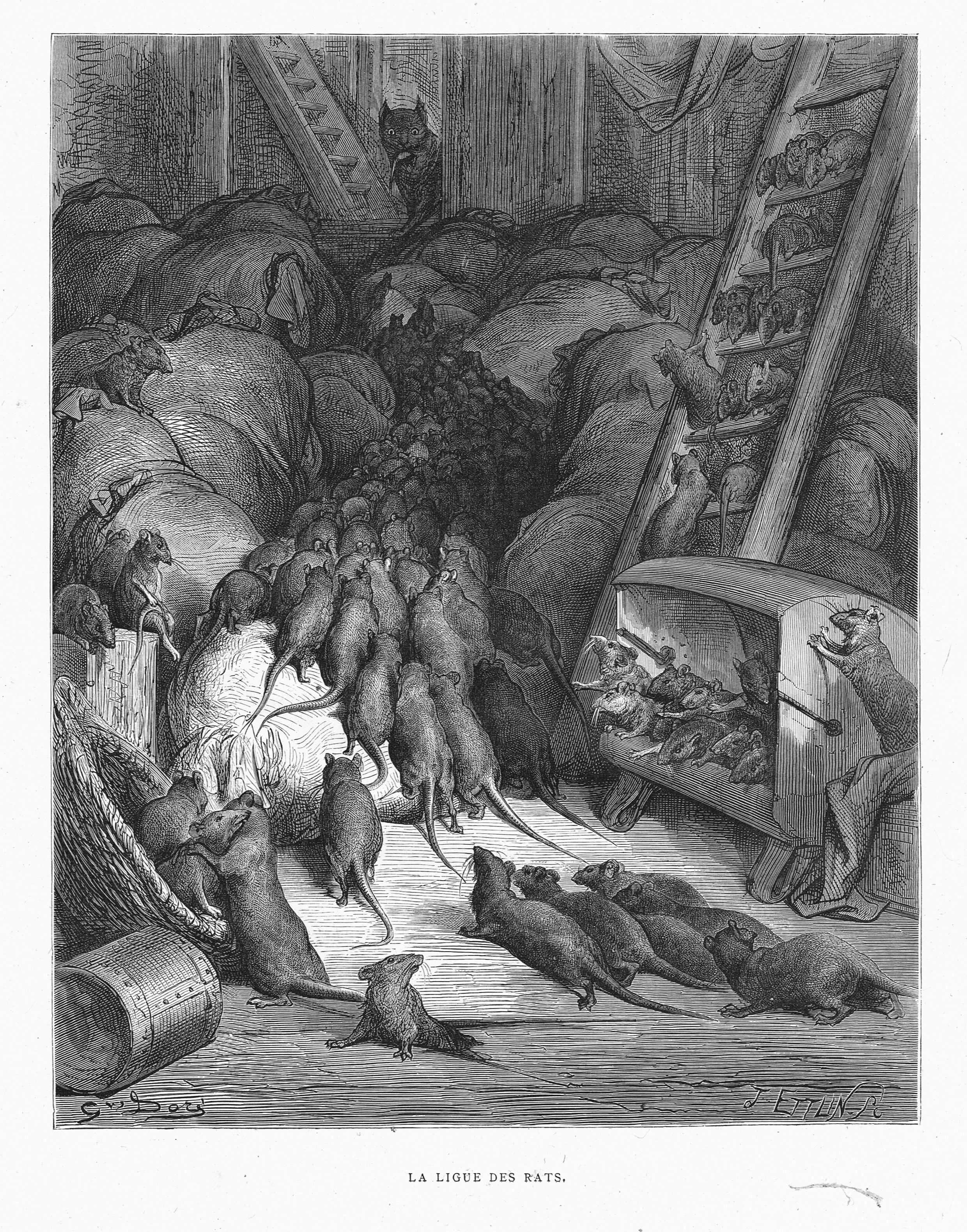 La Ligue Des Rats By Gustave Dore From The Book Les Fables De La Fontaine By Jean De La Fontaine 1866 Art Illustration Rats