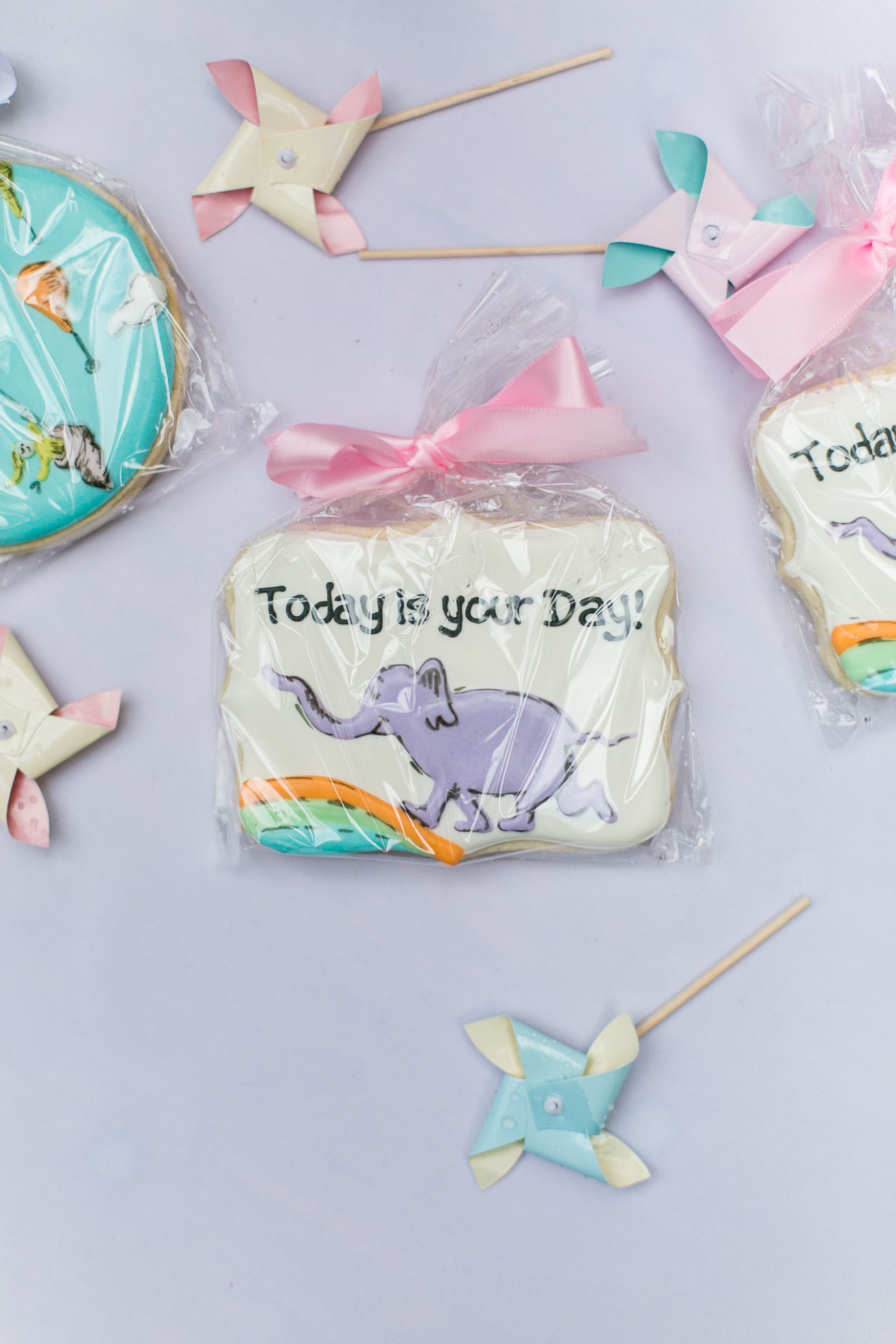 Oh The Places Youll Go Dr Seuss Cookies Nats Sweets Custom