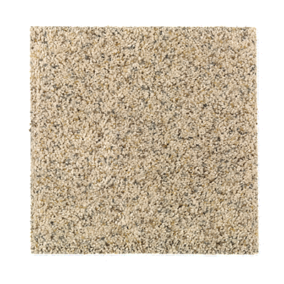 Amazing Inspiration Carpet Spiced Rum Carpeting Mohawk