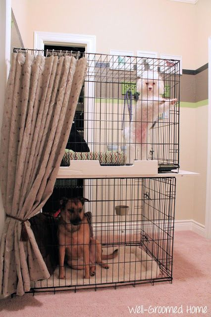 Organizing Pet Supplies Dog Cages Dog Rooms Dog Crate