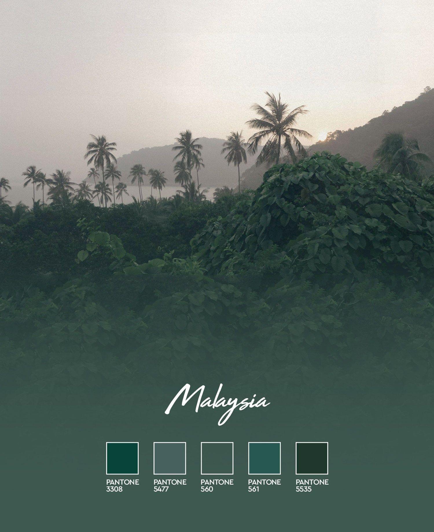Dark Green Moody Hues In Malaysia In 2020