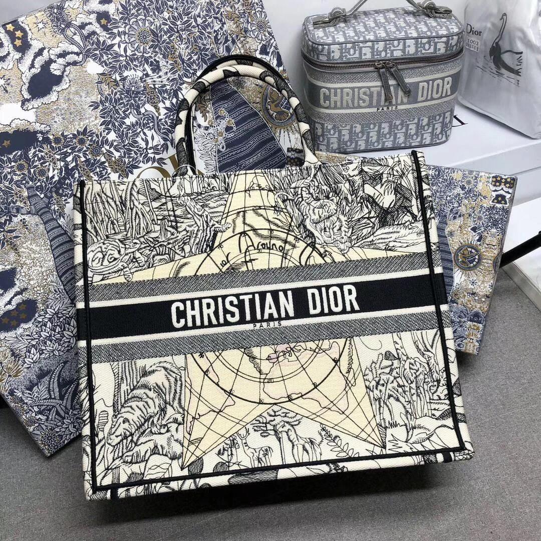 Christian dior book tote bag luxury fashion in 2020