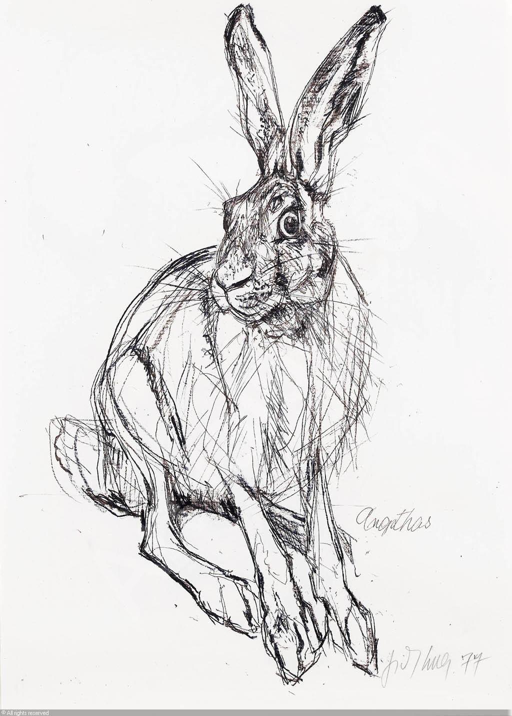 Epingle Par Leslie Jones Sur Inspirational Artwork Croquis Animaux Art Animalier Peintre Animalier
