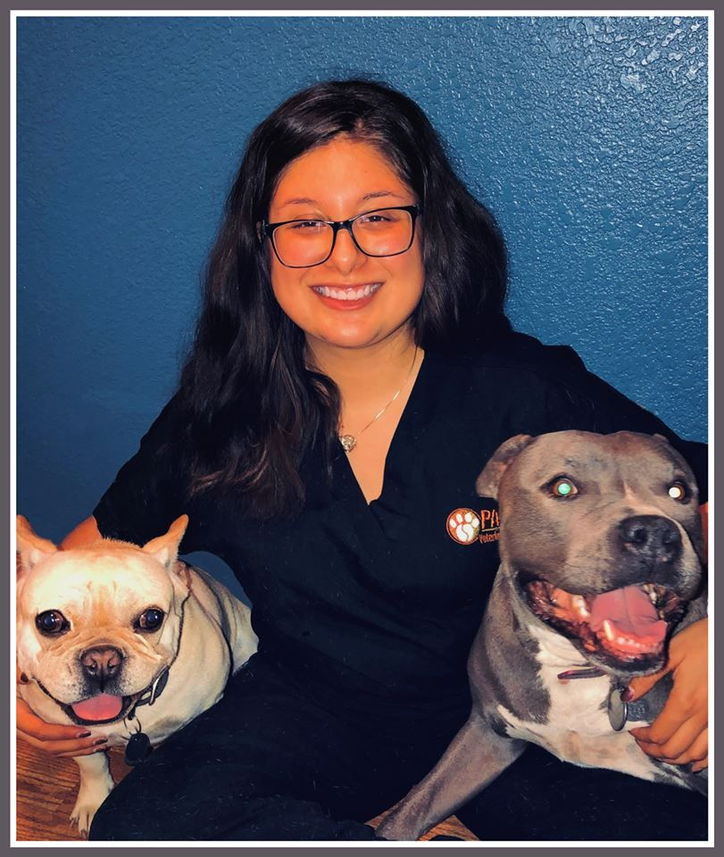 Pin on PAWS Veterinary Center Staff