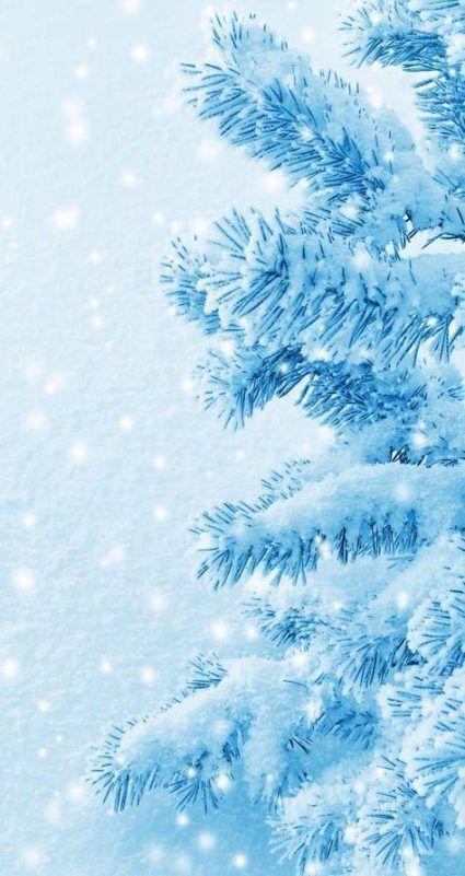 Wallpaper Winter Iphone Trees 64+ New Ideas-#ideas #iphone #trees #wallpaper #winter #winterbucketlist #winterclothes #wintergirl #winterhome #winterinspiration #winteriscoming #winterpainting #winterwallpapers-