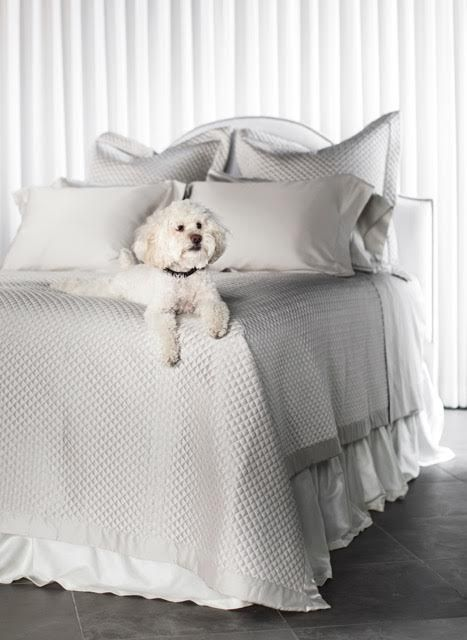 Whats better than dogs and fine bedding? Not much! Our diamond quilted coverlets are the perfect addition to any room. Dog not included but sweet dreams are! To order Sales@TributeGoods.com