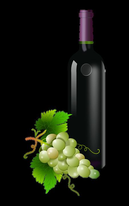 Gratis Billede Pa Pixabay Druer Glas Flaske Vin Vingard Wine Bottle Glass Wine Bottle Wine Bottle Drawing