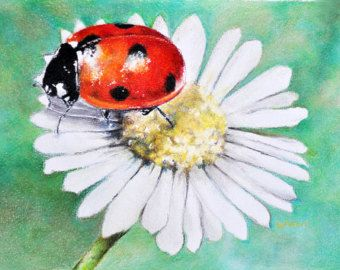 Realistic ladybug drawing - photo#51