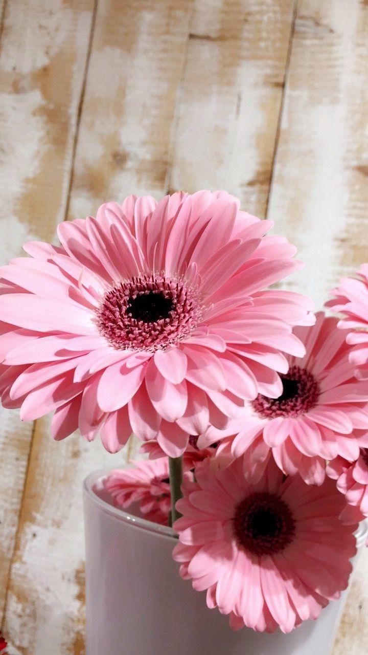 Flower おしゃれまとめの人気アイデア Pinterest Yukie Morimoto