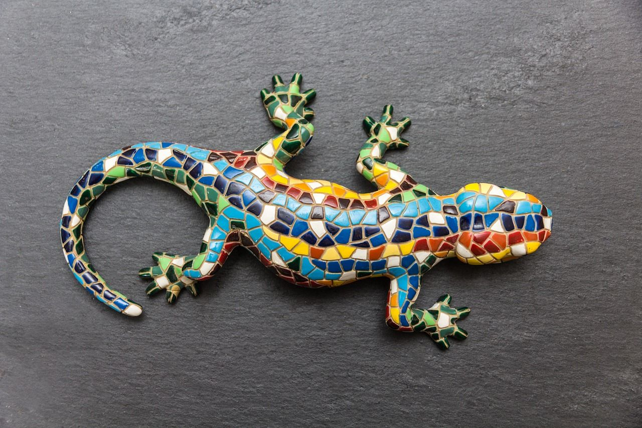 Free Image on Pixabay - Slate, Colorful, Color, Reptiles (met ...