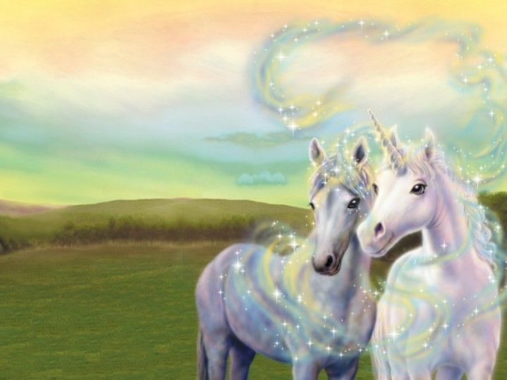 Epingle Par It Wasn T Me Sur Unicorn Power Licorne