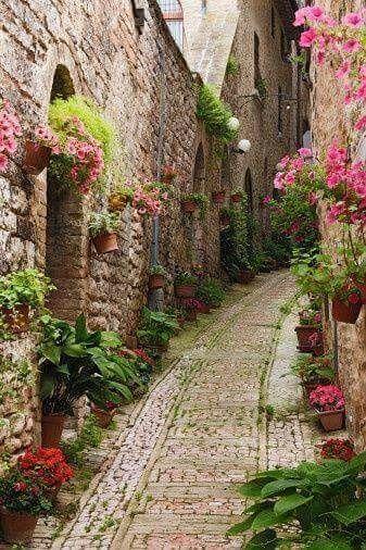 What à beautiful street