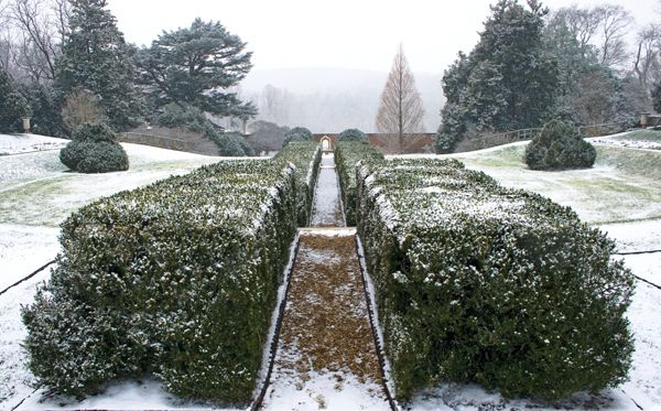 The starkness of the season reveals the sculptural elegance of a wintry garden at James Madison's home, Montpelier [Winter 2011, Department: Garden Party, Photography: Maggie Wilson]