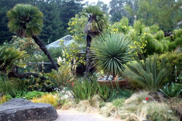 University of California Botanical Garden at Berkeley   California ...