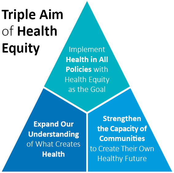 Pin By Hashemi On Social Determinants Of Health Health Equity Social Determinants Of Health