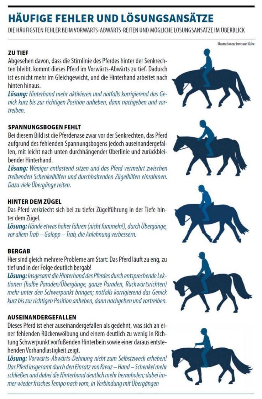 reiten #horsepattern