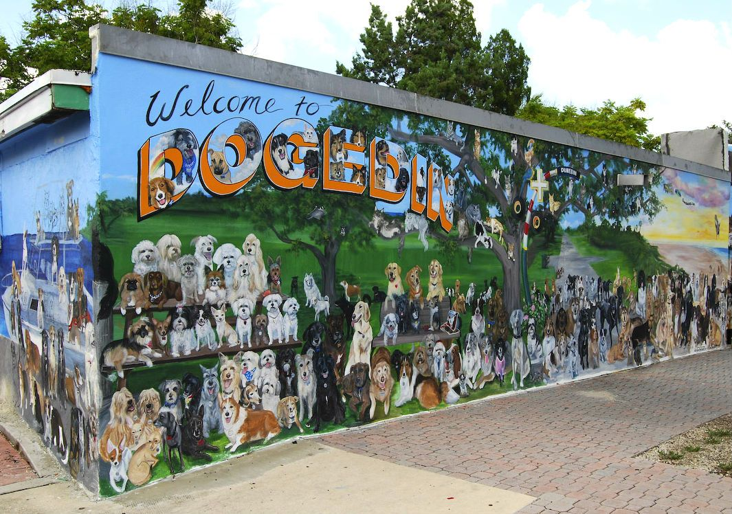 The dog wall mural located in downtown dunedin where people love how cute is the dunedin wall of dogs all hand painted by a dunedin fl artist nvjuhfo Images