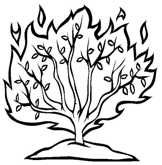 Moses Printable Coloring Pages | Burning bush, Sunday school and Bible