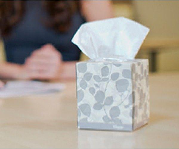Boutique facial tissue