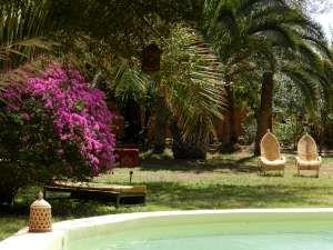 Au Jardin de la Koudya, près de Taroudant…