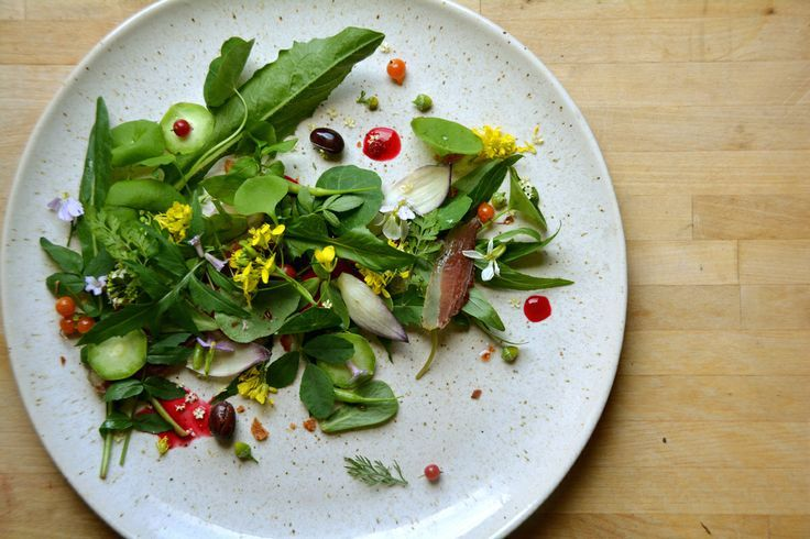 Wild food salad with ingredients foraged yesterday and ...