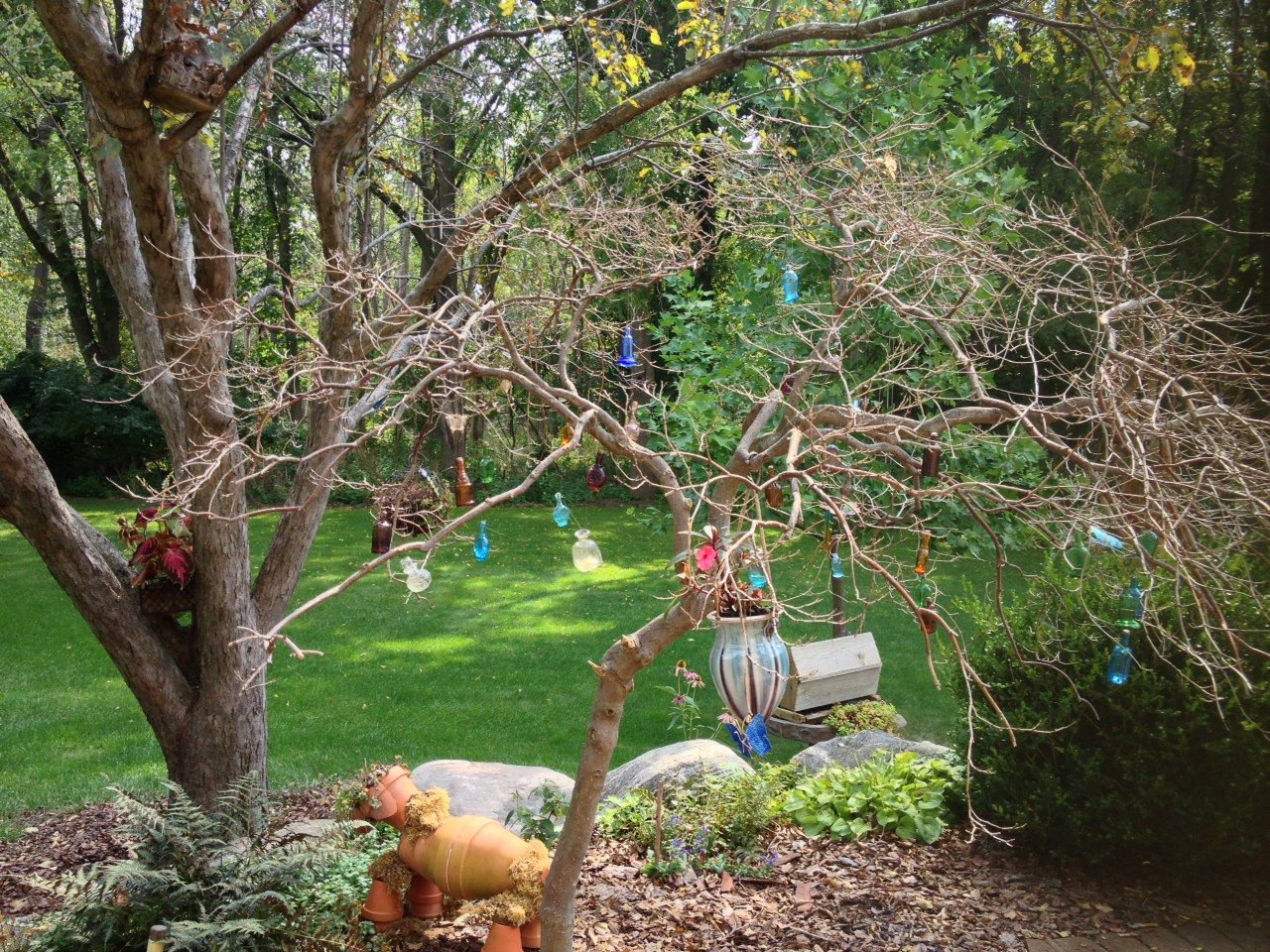 bottle tree. (dead Japanese maple with tiny colored bottles). | My ...