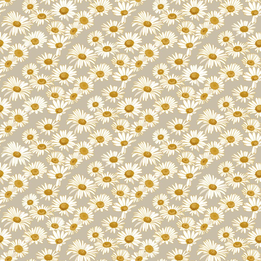 Daisies Wallpaper Daisy wallpaper, Self adhesive