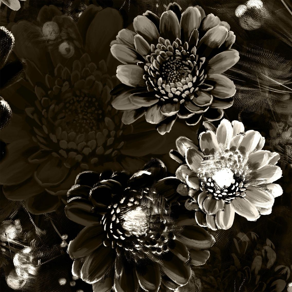 Pin by Rita Carson Guest on Beautiful Materials Black