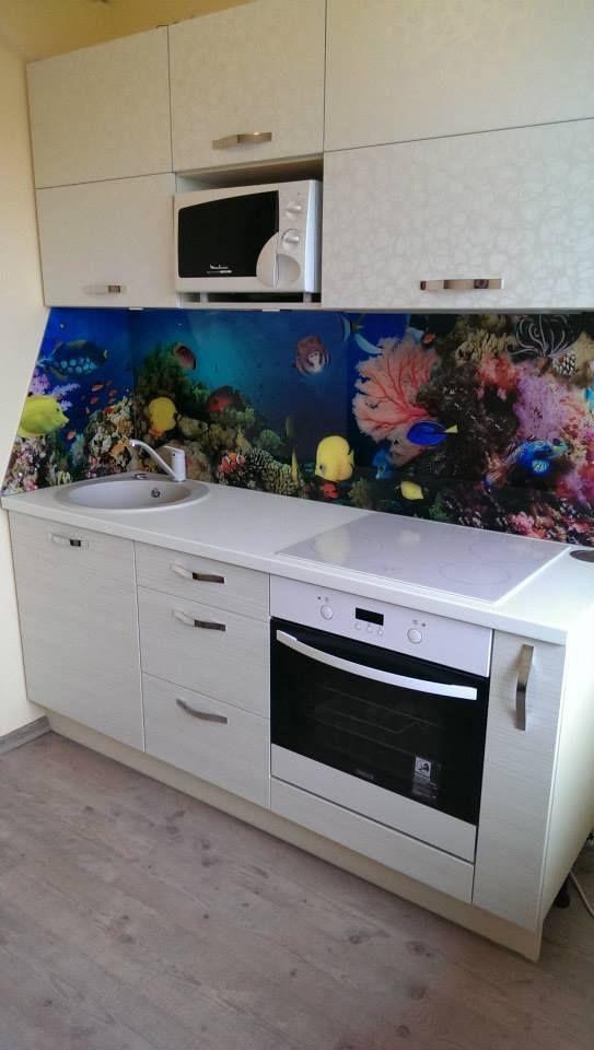 Fotoklaas korallide ja kaladega