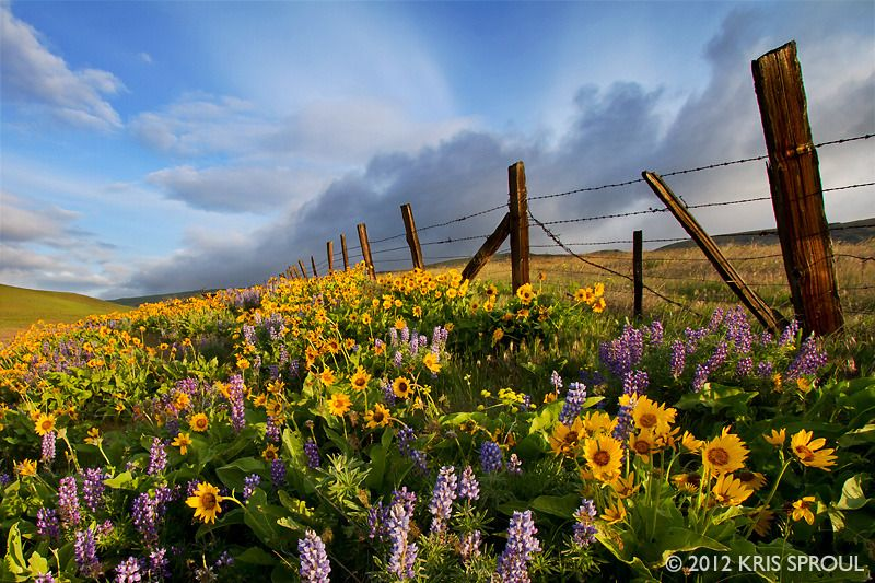 Columbia Hills State Park, The Dalles Ranch Area