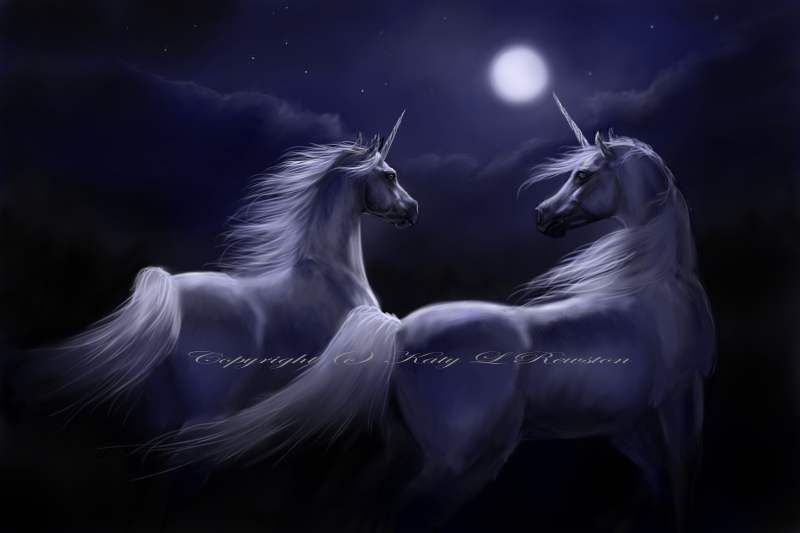 Katy L Rewston Somewhere Out There Licorne Dragons Images Licorne