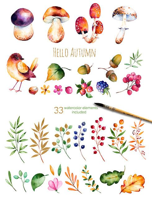 Hello, Autumn. Watercolor collection #helloautumn