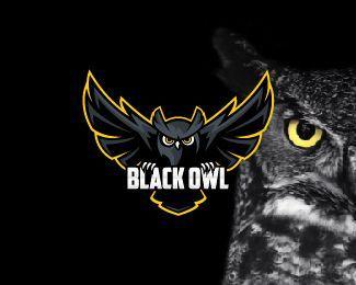 Owl Owllogo Logodesign Logo Keren Binatang Desain Logo