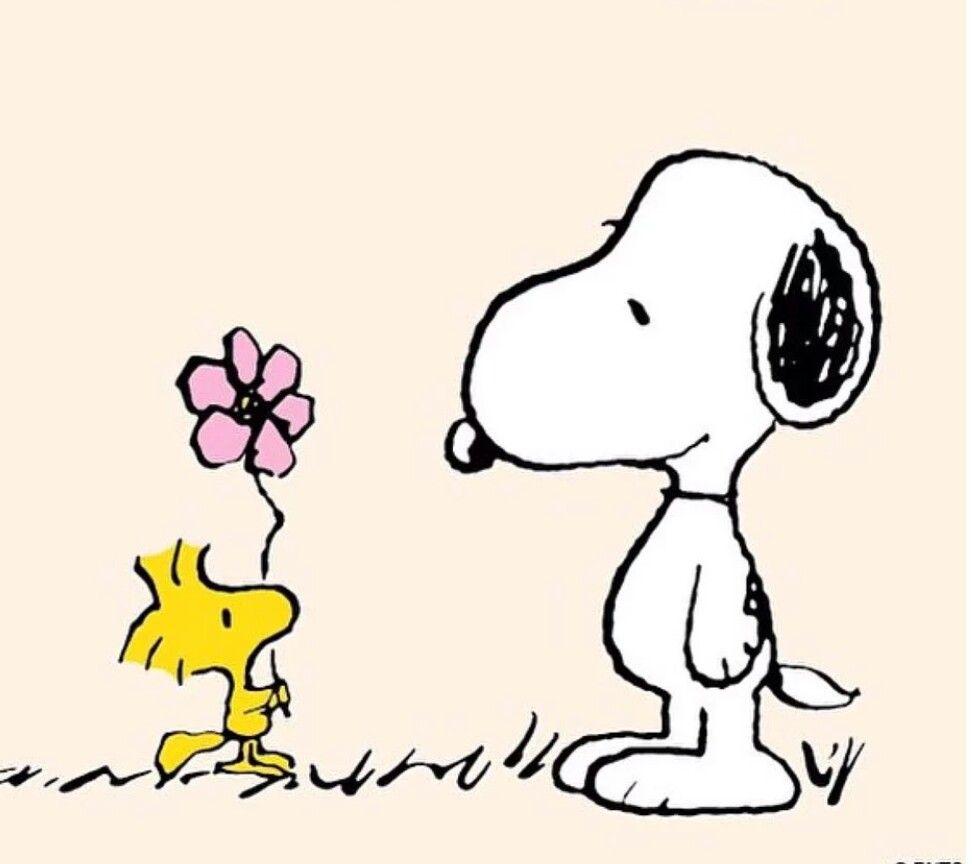 Snoopy | Snoopy | Pinterest | Mamá, Tarjetas y Papel
