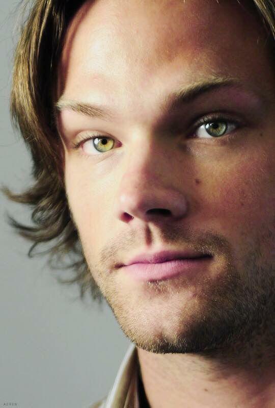 jared padalecki love his eyes moose bby pinterest