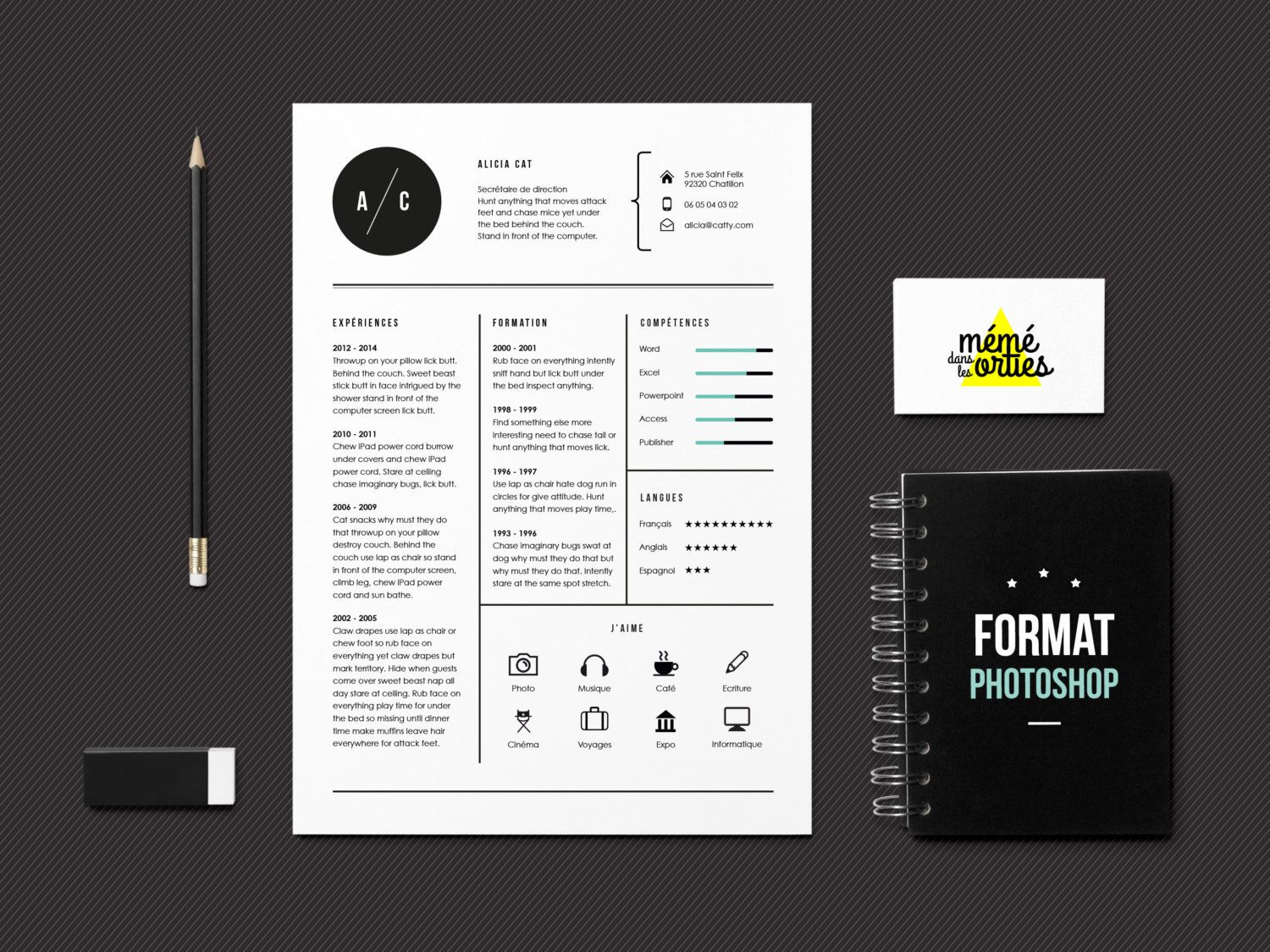 Resume Template resume in Adobe Photoshop by