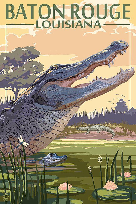 Baton Rouge Louisiana Alligator Scene Art By