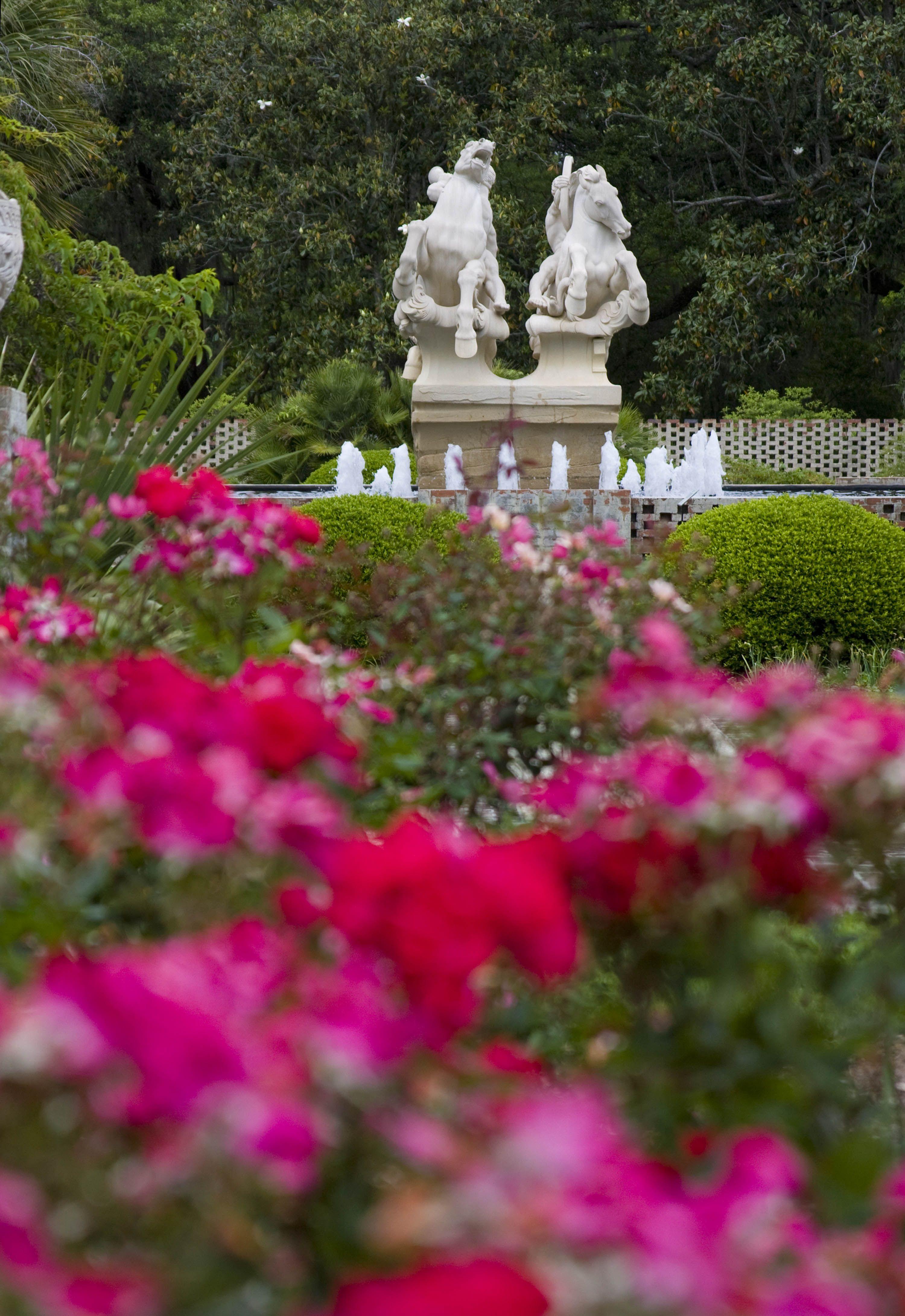 Pin on Plantations & Gardens