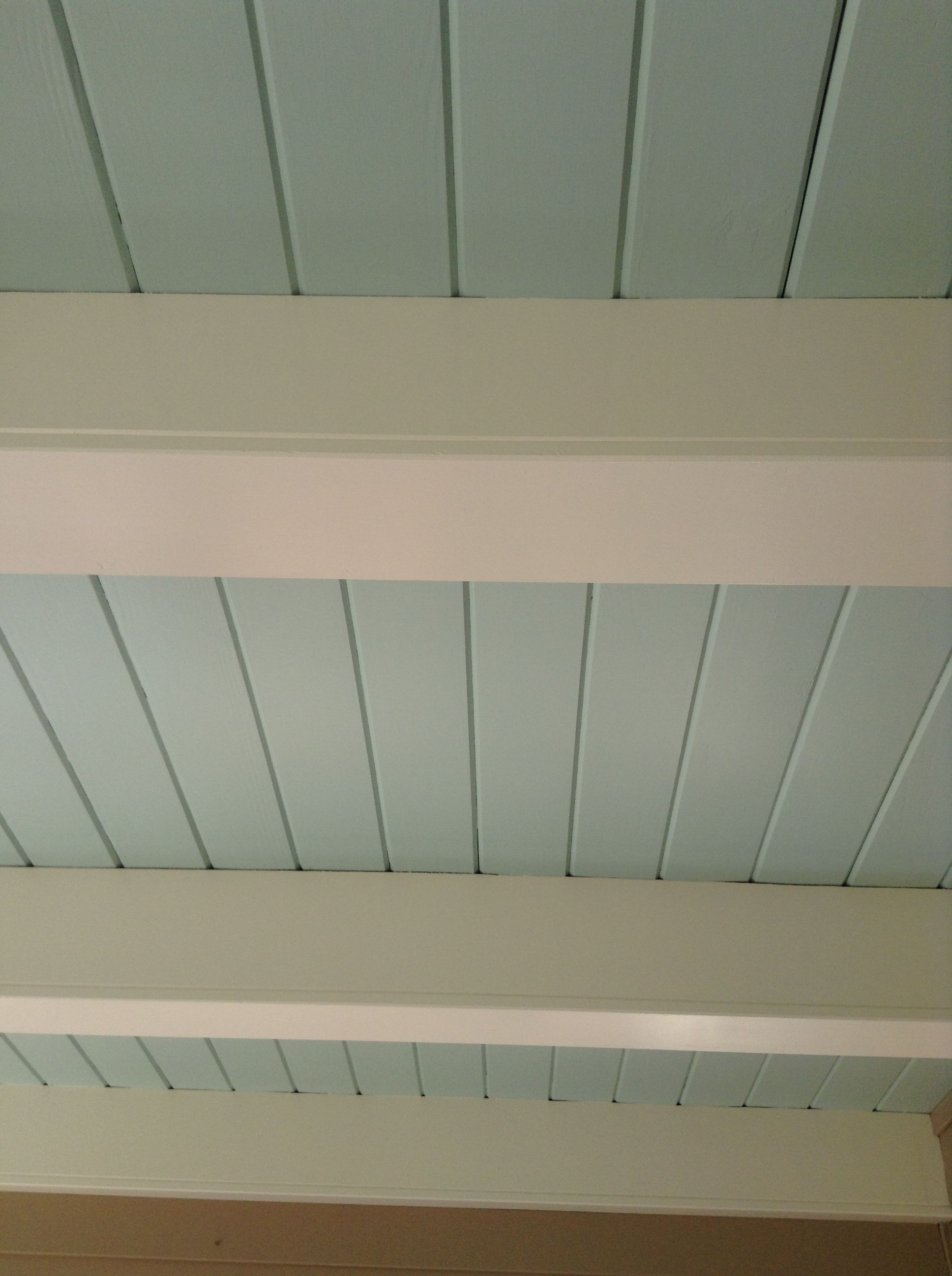 Paint The Shiplap Ceiling Haint Blue